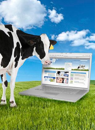 Ahora con Danone, conocemos  el origen de la leche de los yoghourts