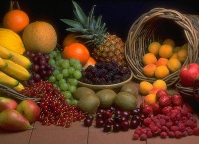 Principios de la dieta South Beach