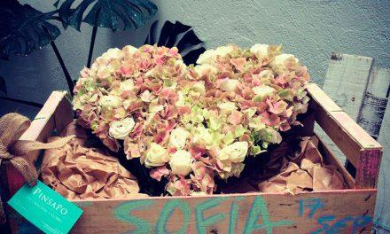 Flores naturales para cualquier ocasión