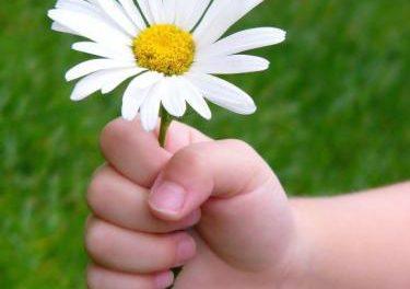 La homeopatía gana peso en los tratamientos pediátricos