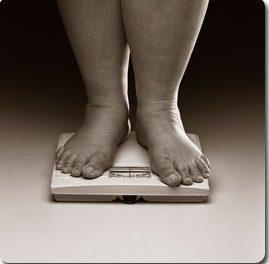 En busca del origen de la grasa