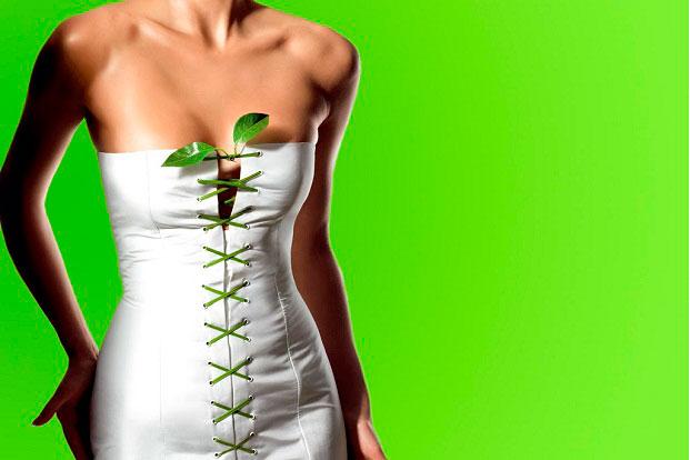 Plantas que ayudan a controlar el peso