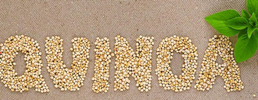 La quinoa, uno de los alimentos más saludables, ¿Cuáles son sus propiedades?