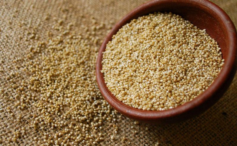 ¿Qué es la quinoa? ¿Qué beneficios tiene para la salud?
