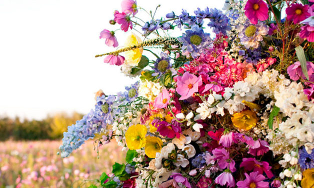 La Fragancia de Carolina Herrera CH L'Eau, una locura floral ideal para el verano