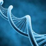 Olay: No necesitas una buena genética para lucir una piel más joven